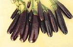 Eggplant - Little Fingers - Organic