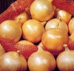 Onion - Yellow Sweet Spanish