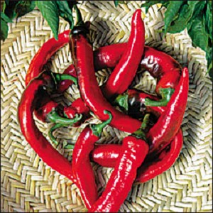 Peppers - Hot Portugal