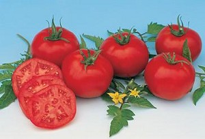 Tomatoes - Heirloom Moskvich - Organic